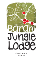 barahi-jungle-lodge